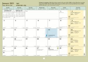 ROI month 02