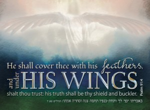 PSALM 91 03